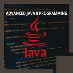 Advanced Java 8 Programming (TT3100-J8)