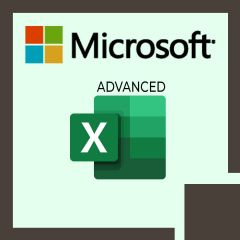 Advanced Microsoft Excel 2019 (MS-55270)
