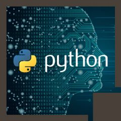 Applied Python for Data Science (TTPS4870)