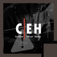 Certified Ethical Hacking Course + CEH Certification Exam Bundle