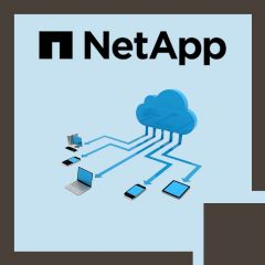 Integrating Hybrid Clouds with NetApp Data Fabric (INTHCDF)