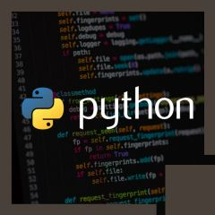Introduction to Python: Creating Scalable, Robust, Interactive Code