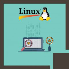 Linux Kernel Debugging and Security (LFD440)