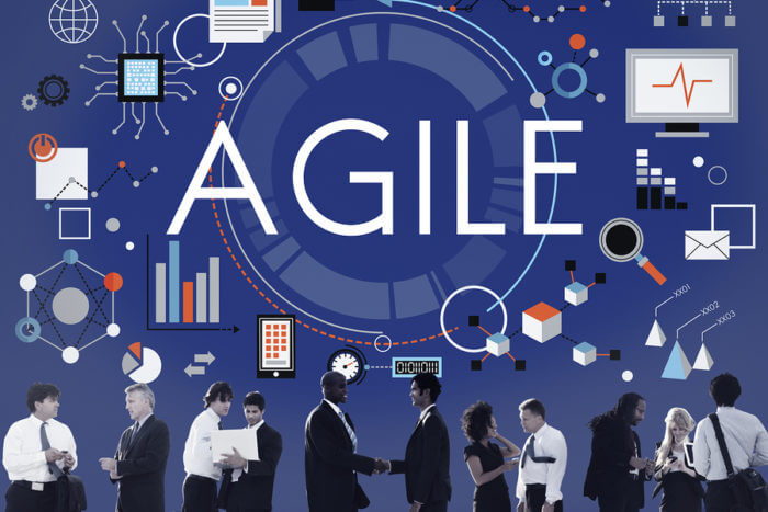 WHAT IS AN AGILE IT ORGANIZATION