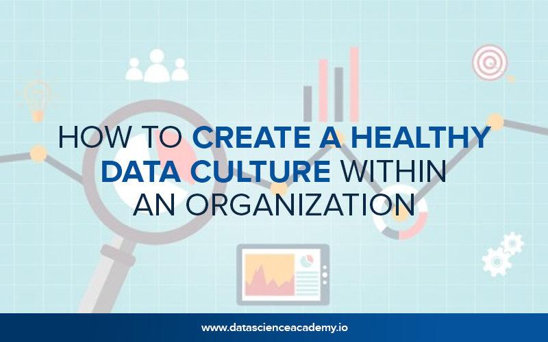 How to Create a Healthy Data Culture Within An Organization